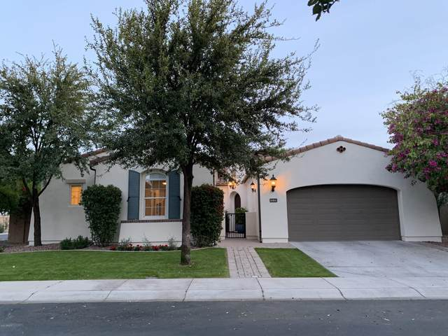 1115 W Coconino Drive, Chandler, AZ 85248 (#6112463) :: AZ Power Team | RE/MAX Results
