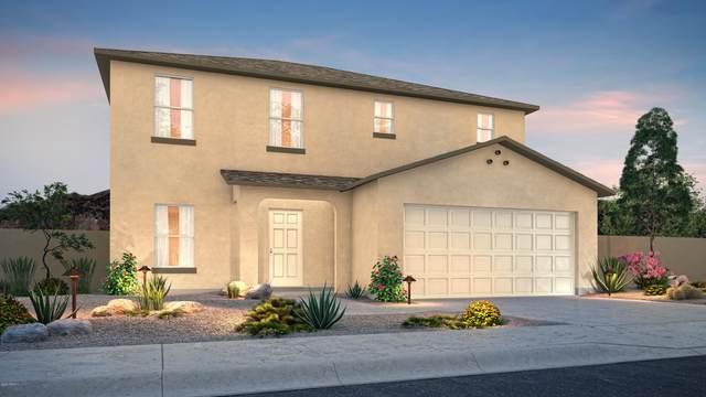 3852 N Princeton Lane, Casa Grande, AZ 85122 (MLS #6112471) :: Keller Williams Realty Phoenix