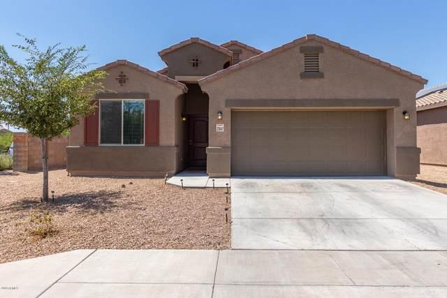 23747 W Wier Avenue, Buckeye, AZ 85326 (MLS #6112510) :: Devor Real Estate Associates