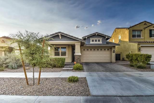 10564 E Sebring Avenue E, Mesa, AZ 85212 (MLS #6112521) :: The Bill and Cindy Flowers Team