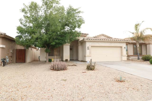 29 E Macaw Court, San Tan Valley, AZ 85143 (MLS #6112542) :: NextView Home Professionals, Brokered by eXp Realty