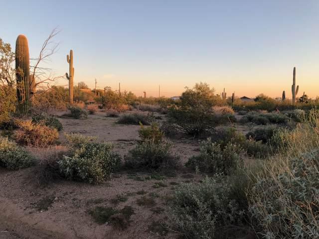 0 E Palm Lane, Mesa, AZ 85207 (MLS #6112545) :: Arizona Home Group