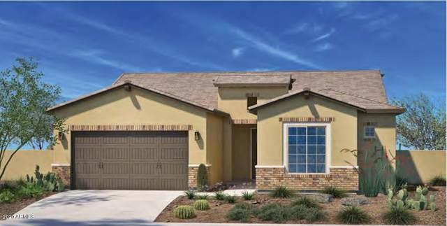 19055 W Palo Verde Drive, Litchfield Park, AZ 85340 (MLS #6112565) :: Devor Real Estate Associates