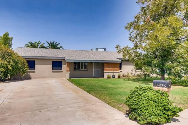 4436 N 81st Ave Avenue, Phoenix, AZ 85033 (MLS #6112606) :: Klaus Team Real Estate Solutions