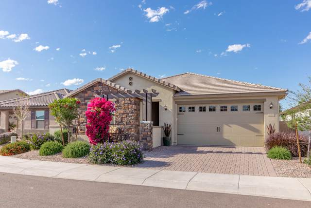 3886 E Constitution Drive, Gilbert, AZ 85296 (MLS #6112652) :: My Home Group