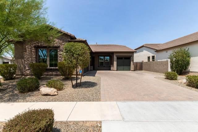 3810 E Powell Place, Chandler, AZ 85249 (MLS #6112654) :: My Home Group