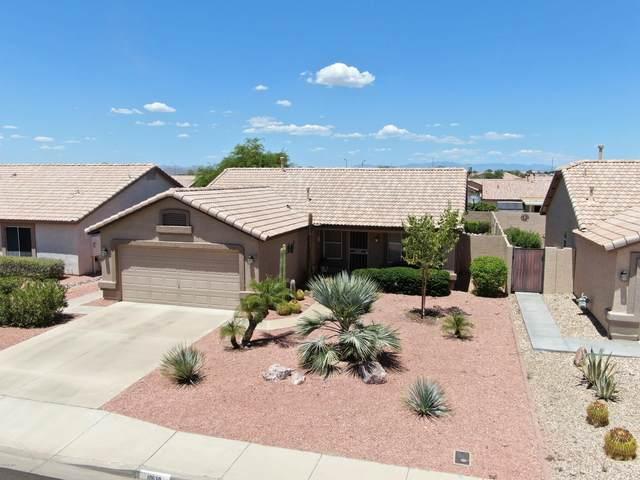 10630 W Potter Drive, Peoria, AZ 85382 (MLS #6112666) :: Devor Real Estate Associates