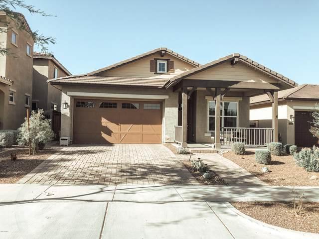 20630 W Nelson Place, Buckeye, AZ 85396 (MLS #6112673) :: Riddle Realty Group - Keller Williams Arizona Realty
