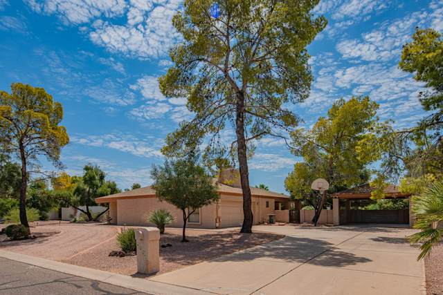 4901 E Altadena Avenue, Scottsdale, AZ 85254 (MLS #6112710) :: Brett Tanner Home Selling Team