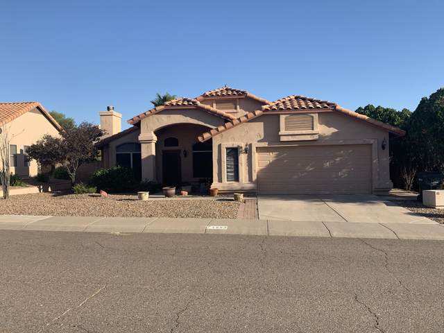 1253 E Bluefield Avenue, Phoenix, AZ 85022 (MLS #6112728) :: Howe Realty