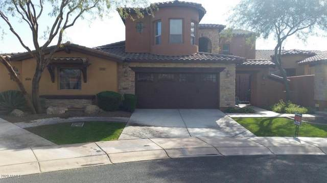 12039 W Red Hawk Drive, Peoria, AZ 85383 (MLS #6112746) :: Long Realty West Valley