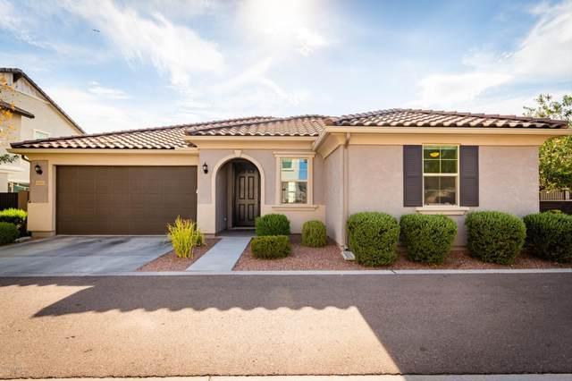 6916 E Peralta Circle, Mesa, AZ 85212 (MLS #6112768) :: NextView Home Professionals, Brokered by eXp Realty