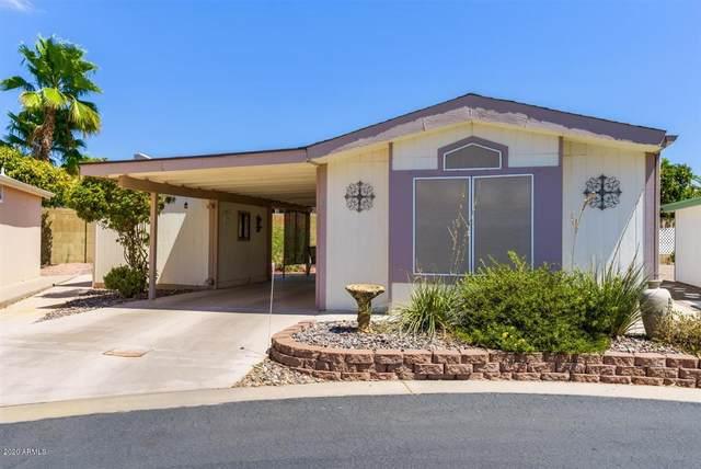 5735 E Mcdowell Road #81, Mesa, AZ 85215 (#6112779) :: The Josh Berkley Team