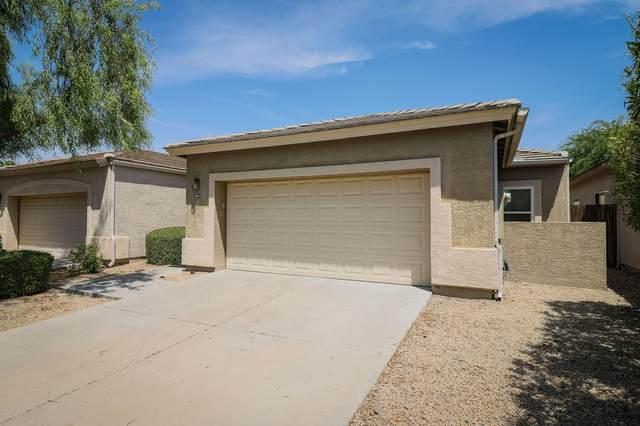 2814 E Karen Drive, Phoenix, AZ 85032 (MLS #6112805) :: Keller Williams Realty Phoenix