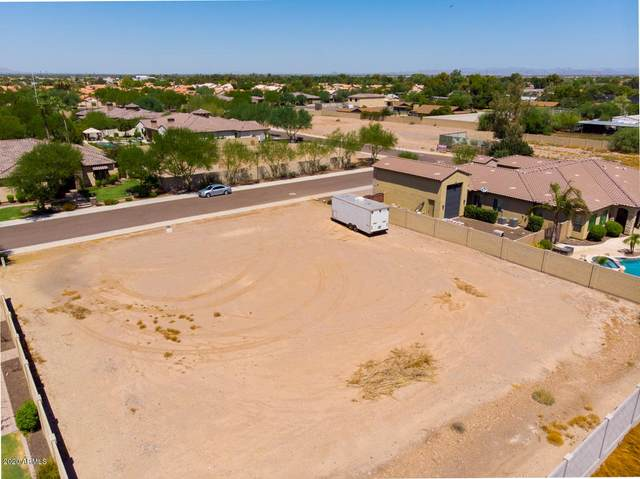 13851 N 74TH Avenue, Peoria, AZ 85381 (MLS #6112813) :: The Results Group