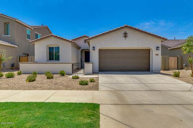 9739 E Torino Avenue, Mesa, AZ 85212 (MLS #6112814) :: Klaus Team Real Estate Solutions