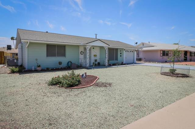 10033 W Palmer Drive, Sun City, AZ 85351 (MLS #6112815) :: Homehelper Consultants