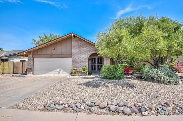 6204 W Larkspur Drive, Glendale, AZ 85304 (MLS #6112828) :: Riddle Realty Group - Keller Williams Arizona Realty