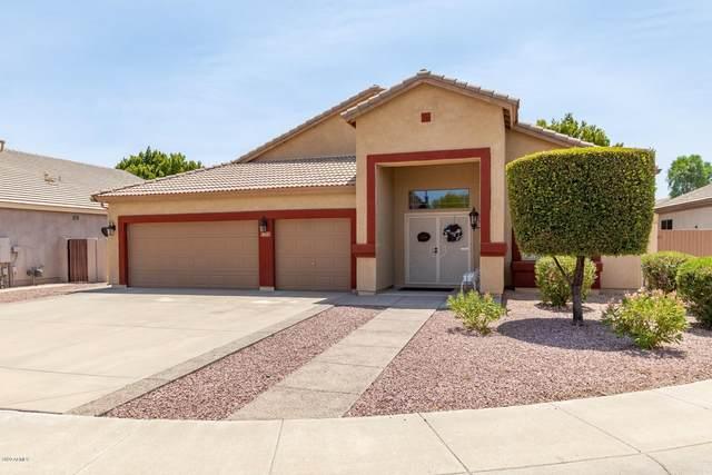 8051 W Clara Lane, Peoria, AZ 85382 (MLS #6112874) :: Arizona Home Group