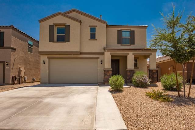1017 W Canyonlands Court, San Tan Valley, AZ 85140 (MLS #6112875) :: My Home Group