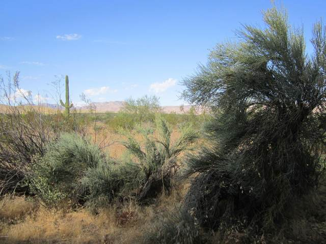 0 W Windy Hill Drive, Roosevelt, AZ 85545 (MLS #6112934) :: Long Realty West Valley