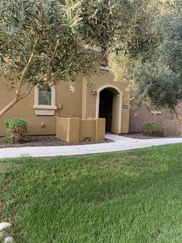 900 S 94TH Street #1161, Chandler, AZ 85224 (MLS #6112982) :: My Home Group