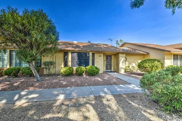 13642 W Bolero Drive, Sun City West, AZ 85375 (MLS #6113029) :: Brett Tanner Home Selling Team