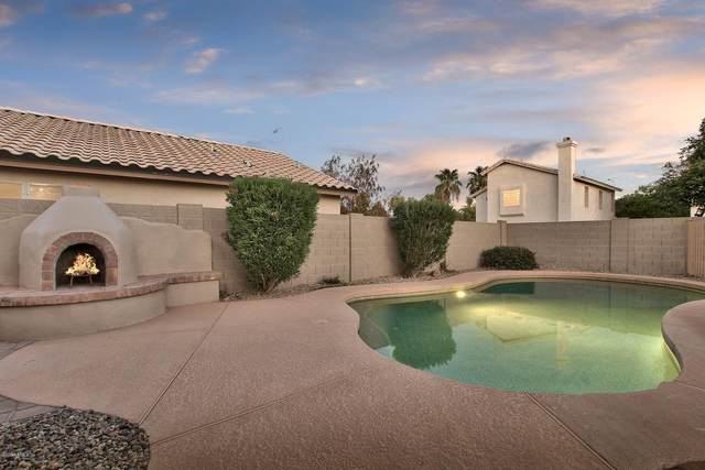 1083 W Bluebird Drive, Chandler, AZ 85286 (MLS #6113043) :: Openshaw Real Estate Group in partnership with The Jesse Herfel Real Estate Group