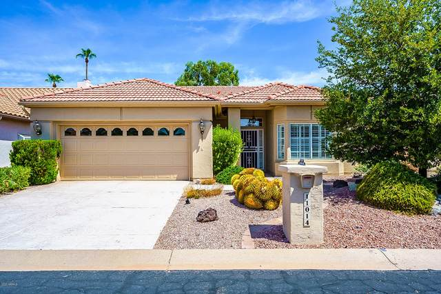 11014 E Navajo Drive, Sun Lakes, AZ 85248 (MLS #6113066) :: Scott Gaertner Group