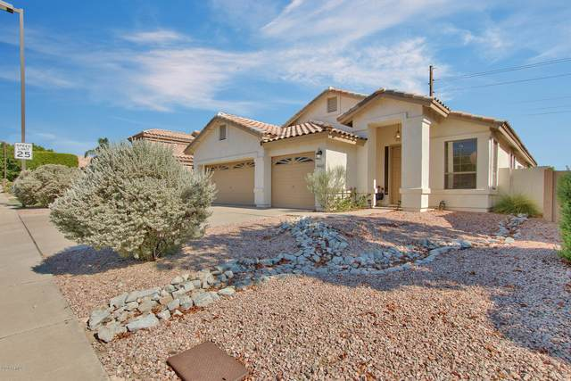 6447 E Sierra Morena Street, Mesa, AZ 85215 (MLS #6113111) :: Openshaw Real Estate Group in partnership with The Jesse Herfel Real Estate Group