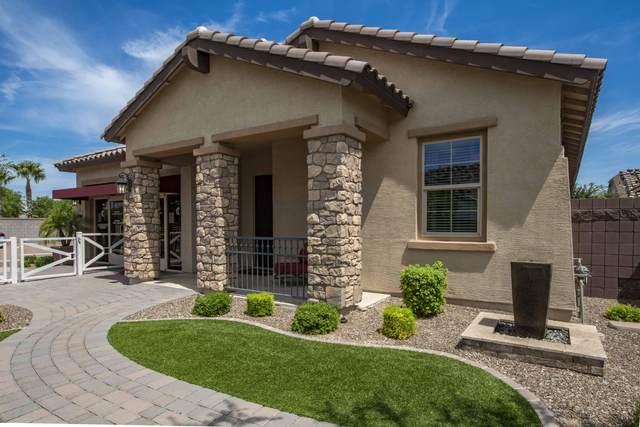 232 W Cucumber Tree Avenue, Queen Creek, AZ 85140 (MLS #6113124) :: Yost Realty Group at RE/MAX Casa Grande