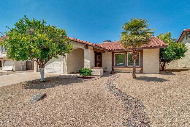 2114 E Evans Drive, Phoenix, AZ 85022 (MLS #6113134) :: Klaus Team Real Estate Solutions