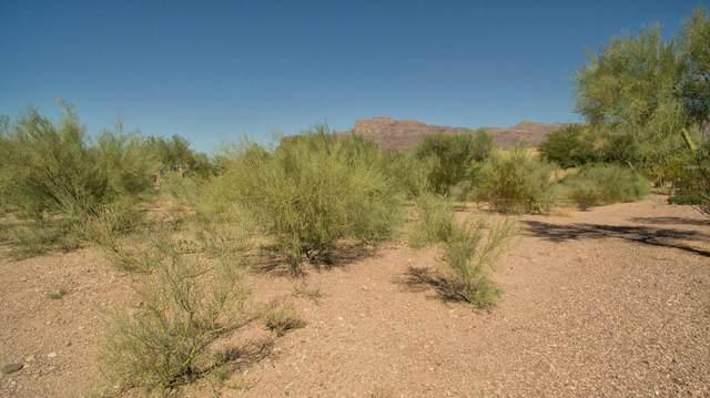 3304 S Ponderosa Drive, Gold Canyon, AZ 85118 (#6113195) :: Luxury Group - Realty Executives Arizona Properties