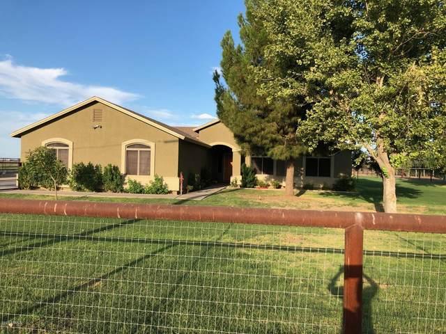 8927 S 213TH Drive, Buckeye, AZ 85326 (MLS #6113243) :: The Bill and Cindy Flowers Team