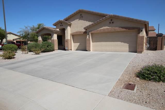 2993 N Lainey Lane, Buckeye, AZ 85396 (MLS #6113280) :: Klaus Team Real Estate Solutions