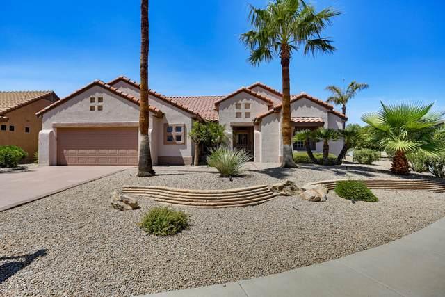 18532 N Laguna Azul Court, Surprise, AZ 85374 (MLS #6113354) :: Brett Tanner Home Selling Team