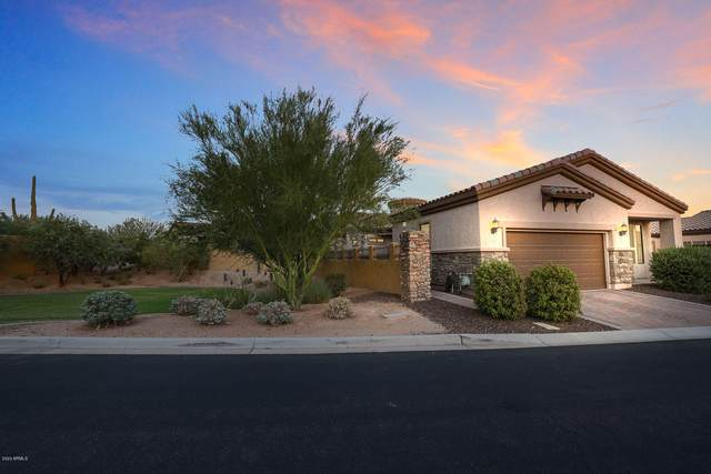 2061 N 88TH Street, Mesa, AZ 85207 (MLS #6113378) :: Keller Williams Realty Phoenix