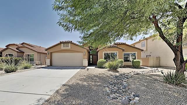 28894 N Lazurite Way, San Tan Valley, AZ 85143 (MLS #6113393) :: Klaus Team Real Estate Solutions