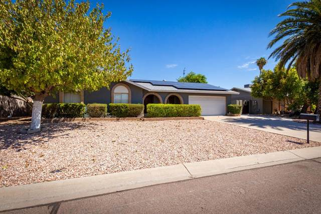 614 E Calle Chulo Road, Goodyear, AZ 85338 (MLS #6113419) :: Openshaw Real Estate Group in partnership with The Jesse Herfel Real Estate Group