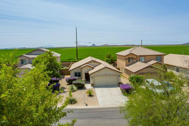 5319 E Silverbell Road, San Tan Valley, AZ 85143 (MLS #6113421) :: The Everest Team at eXp Realty