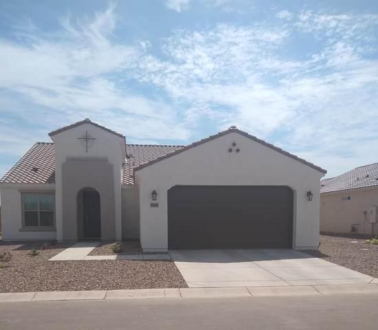 5145 N Arlington Road, Eloy, AZ 85131 (MLS #6113430) :: Dijkstra & Co.