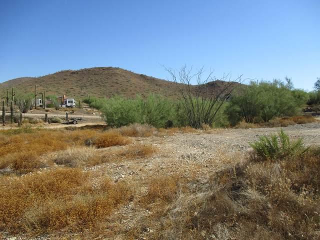 1.2 acre N 19 Way, Phoenix, AZ 85086 (MLS #6113435) :: The Bill and Cindy Flowers Team