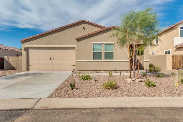 18086 E Via Rubio, Gold Canyon, AZ 85118 (MLS #6113441) :: Dijkstra & Co.