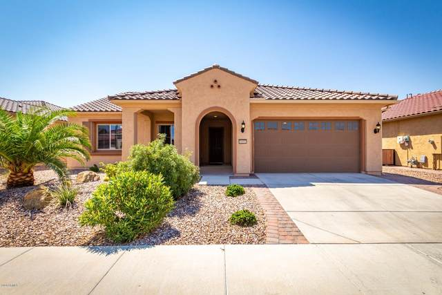 5691 W Cinder Brook Way, Florence, AZ 85132 (MLS #6113456) :: Keller Williams Realty Phoenix