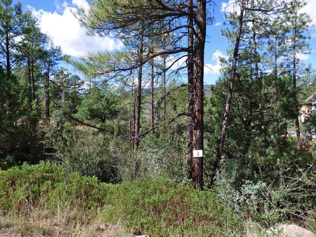 3818 N Whispering Pine Road, Pine, AZ 85544 (MLS #6113486) :: The Property Partners at eXp Realty