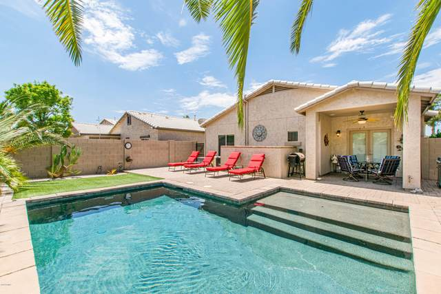 1002 E Desert Springs Way, San Tan Valley, AZ 85143 (MLS #6113506) :: CANAM Realty Group