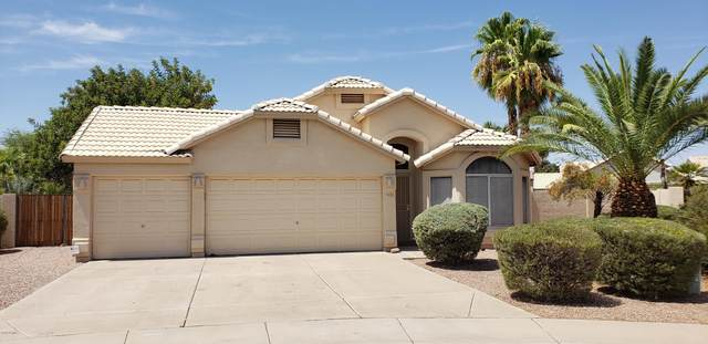 920 E Orchid Lane, Chandler, AZ 85225 (MLS #6113507) :: The W Group