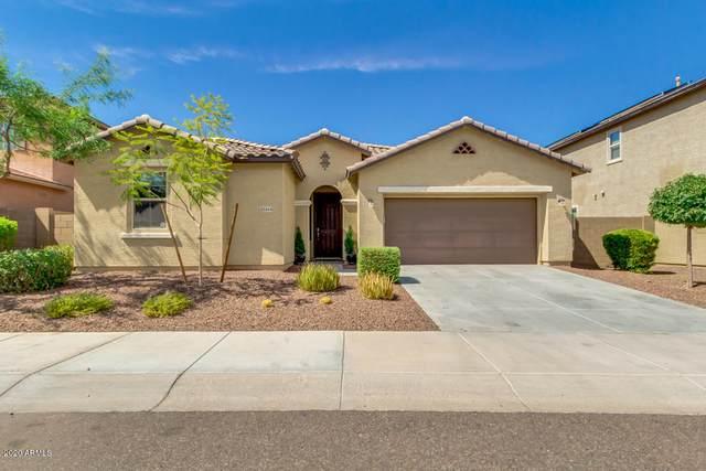 21444 W Terri Lee Drive, Buckeye, AZ 85396 (MLS #6113512) :: The W Group