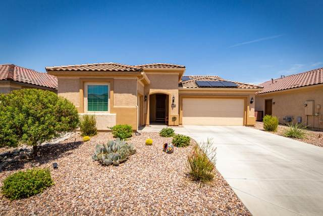 5664 W Cinder Brook Way, Florence, AZ 85132 (MLS #6113513) :: Keller Williams Realty Phoenix