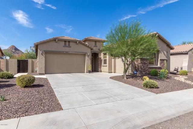 5536 W Buckhorn Trail, Phoenix, AZ 85083 (MLS #6113520) :: REMAX Professionals